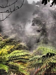 New Zealand North Island - Hot Springs