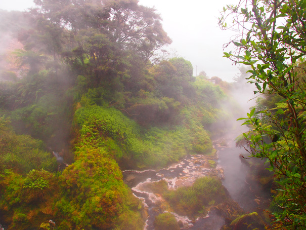New Zealand North Island - Rotorua