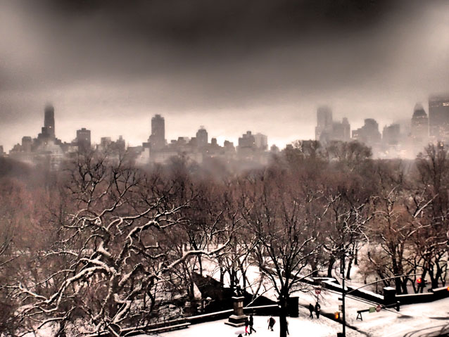 New York - Central Park After Snow Fall