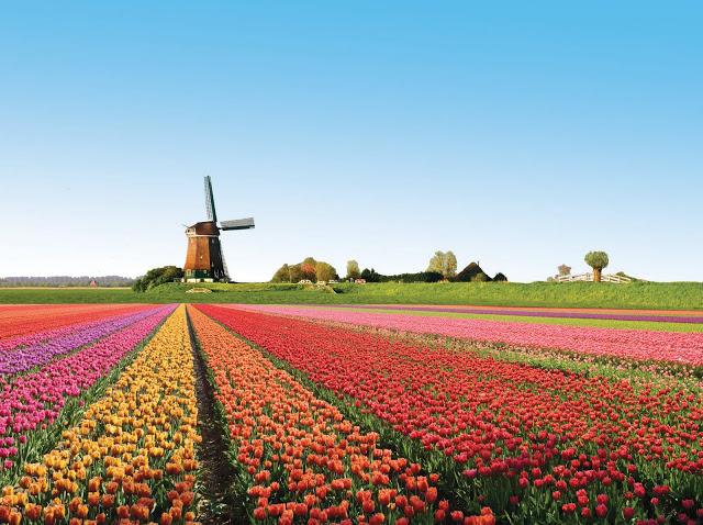 Amsterdam - Long Term Travel