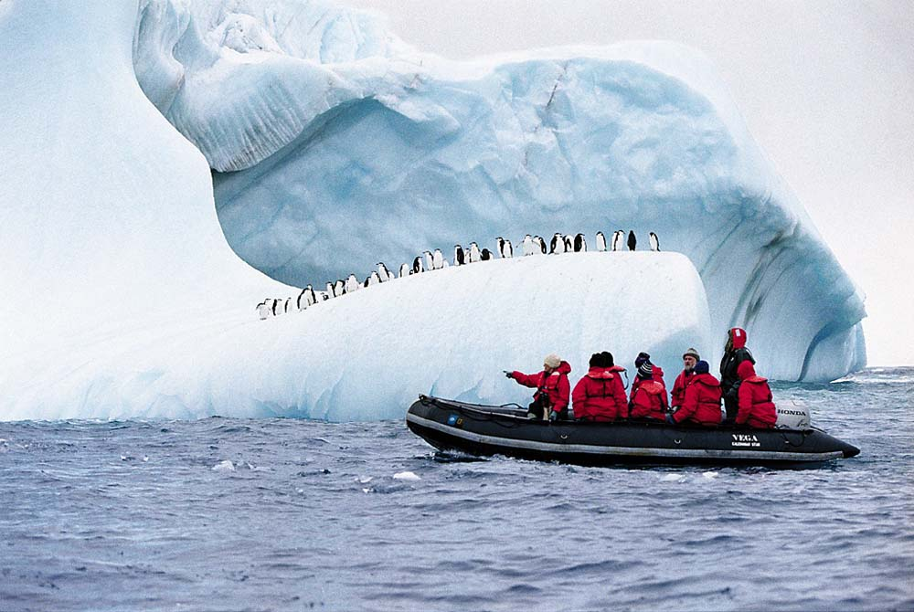 Antarctic Cruise - Long Term Travel