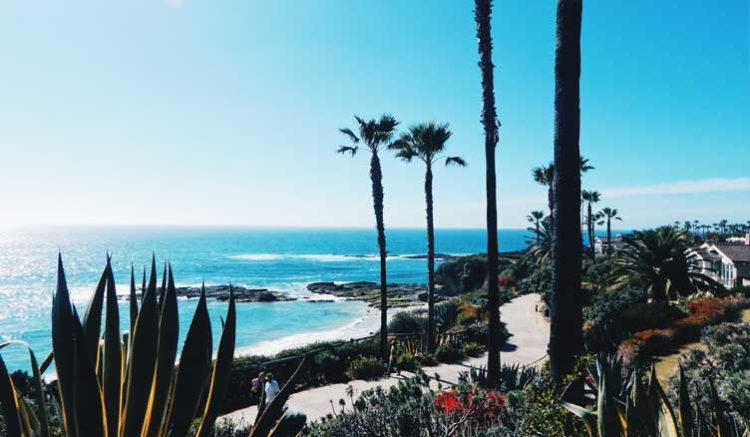 Cool and Unusual Things to do in California - Long term travel