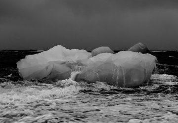 Polar Bears and the Polar Ice Caps - nomadical sabbatical
